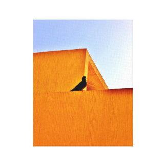 A Bird in Thought Canvas Print