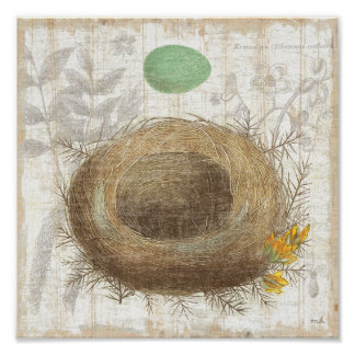 A Bird's Nest with a Green Egg Poster