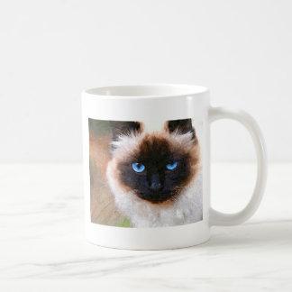 A Birman Cat Coffee Mug