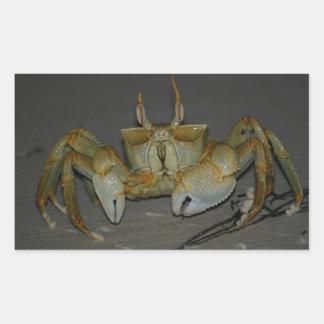 A bit crabby...