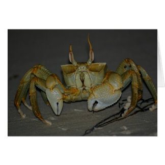 A bit crabby... greeting card