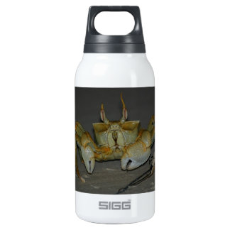 A bit crabby... 10 oz insulated SIGG thermos water bottle