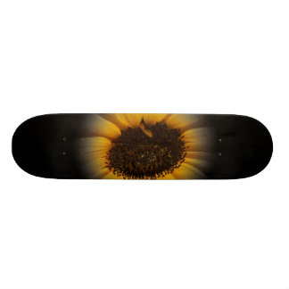 A Bit Of Sunflower Skateboard