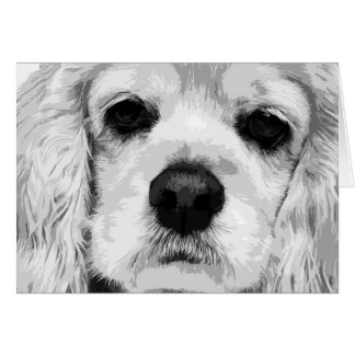 A black and white American cocker spaniel Card