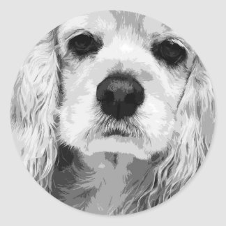 A black and white American cocker spaniel Classic Round Sticker