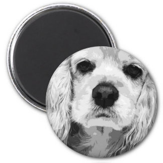 A black and white American cocker spaniel Magnet