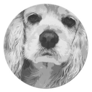A black and white American cocker spaniel Plate