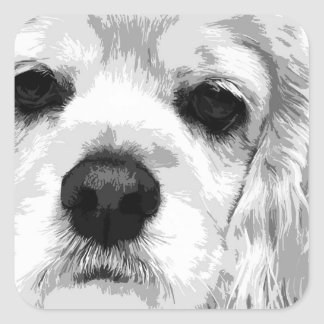 A black and white American cocker spaniel Square Sticker