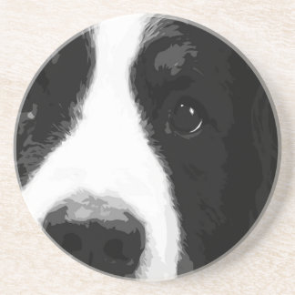 A black and white Bernese mountain dog Coaster