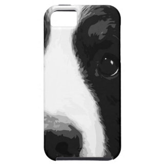 A black and white Bernese mountain dog iPhone 5 Cases