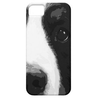 A black and white Bernese mountain dog iPhone 5 Covers