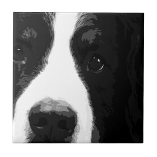 A black and white Bernese mountain dog Tile