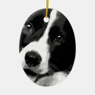 A black and white Border collie Ceramic Ornament