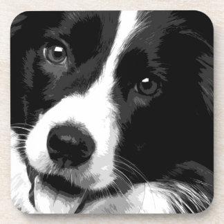 A black and white Border collie Coaster