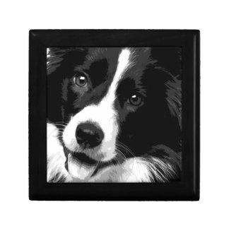 A black and white Border collie Gift Box