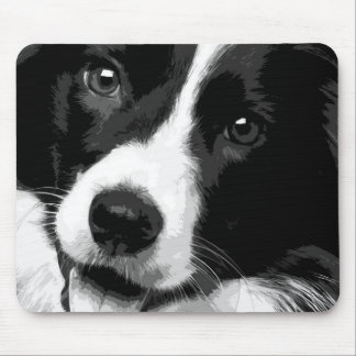 A black and white Border collie Mouse Pad