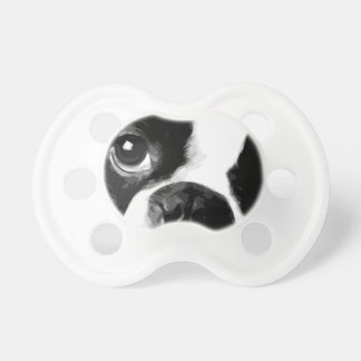 A black and white Boston terrier Pacifier