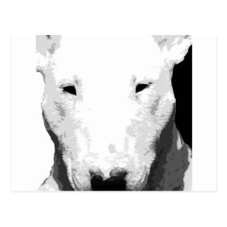 A black and white Bull terrier Postcard