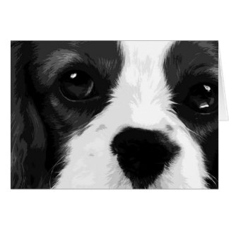 A black and white Cavalier king charles spaniel Card