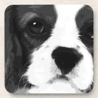 A black and white Cavalier king charles spaniel Coaster