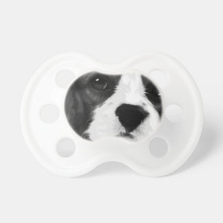 A black and white Cavalier king charles spaniel Pacifier