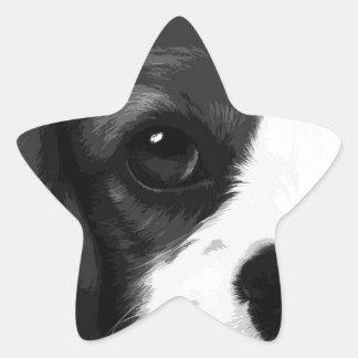 A black and white Cavalier king charles spaniel Star Sticker