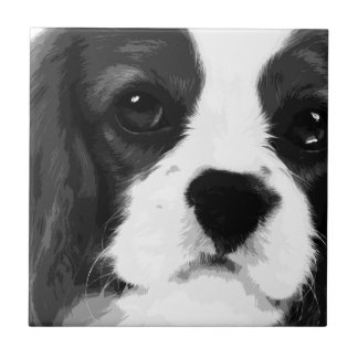 A black and white Cavalier king charles spaniel Tile