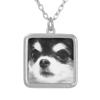 A black and white Chihuahua Silver Plated Necklace