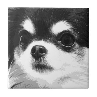A black and white Chihuahua Tile