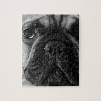 A black and white French bulldog Jigsaw Puzzle