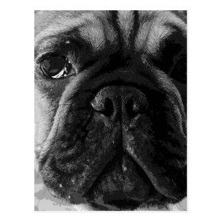 A black and white French bulldog Postcard