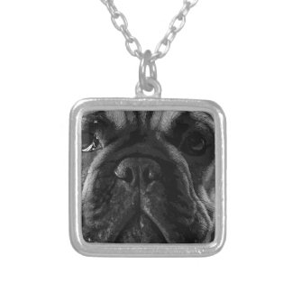 A black and white French bulldog Silver Plated Necklace