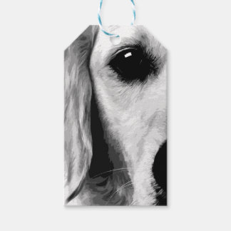 A black and white Golden retriever Gift Tags