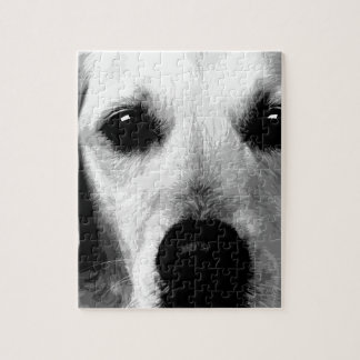 A black and white Golden retriever Jigsaw Puzzle