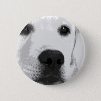 A black and white Labrador retriever 2 Inch Round Button