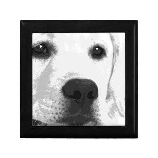 A black and white Labrador retriever Gift Box