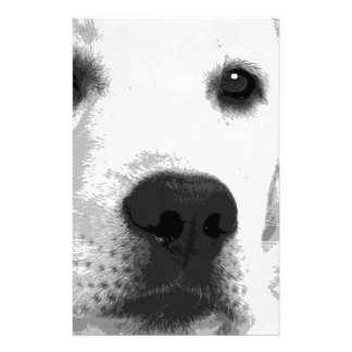 A black and white Labrador retriever Stationery