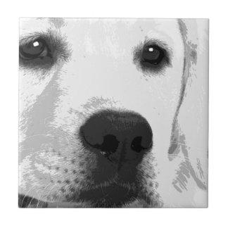 A black and white Labrador retriever Tile