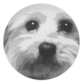 A black and white Maltese Plate