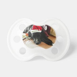 A Black Dog At Christmas with His Santa Hat Pacifier