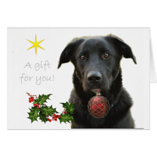A Black Labrador retriever bringing gift Card