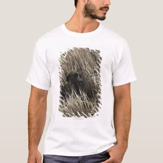 A black puppy in a meadow. T-Shirt