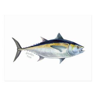 A Blackfin Tuna postcard. Postcard