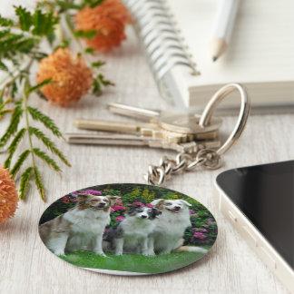 a border collie, Bluem alder, and two Australia Basic Round Button Keychain