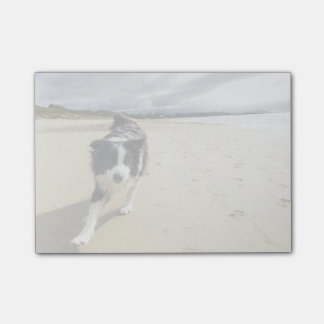 A Border Collie Dog Running On The Beach Post-it Notes