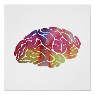 A brain poster