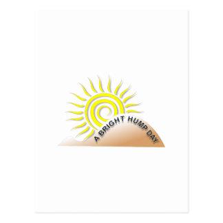 A Bright Hump Day Postcard