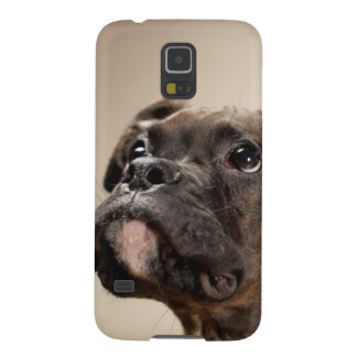 A Brindle Boxer puppy looking up curiously. Cases For Galaxy S5