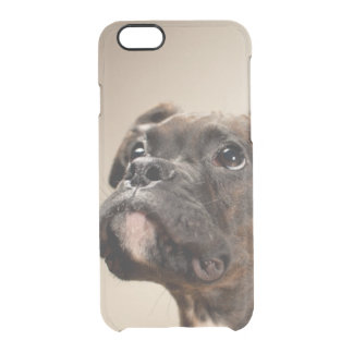 A Brindle Boxer puppy looking up curiously. Clear iPhone 6/6S Case