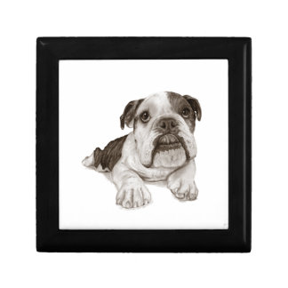 A Brindle Bulldog Puppy Trinket Box